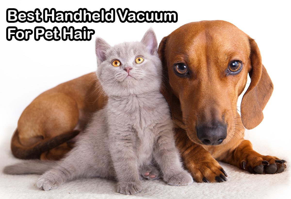Spotless Vacuum's list of the best handheld pet vacuums