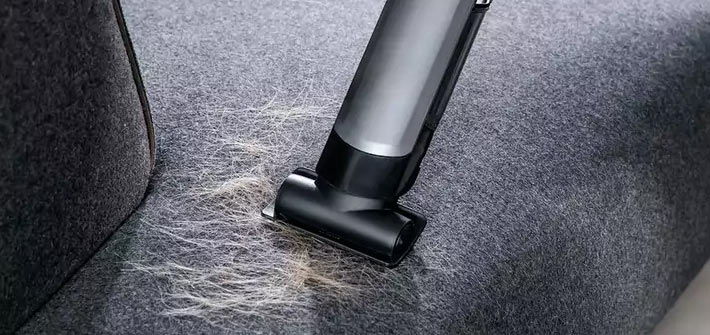 Cleaning up pet hair