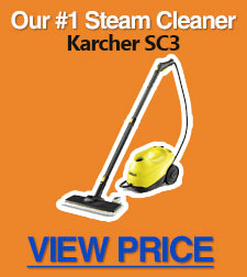Our top steam cleaner